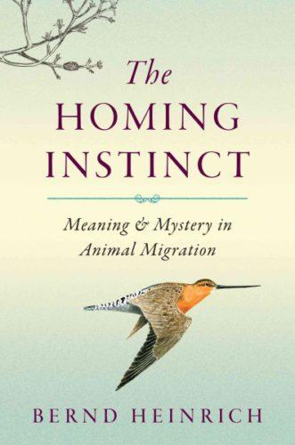 The Homing Instinct, by Bernd Heinrich