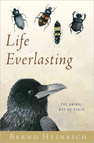 Life Everlasting, by Bernd Heinrich
