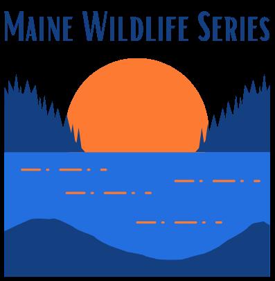 Maine Wildlife Series