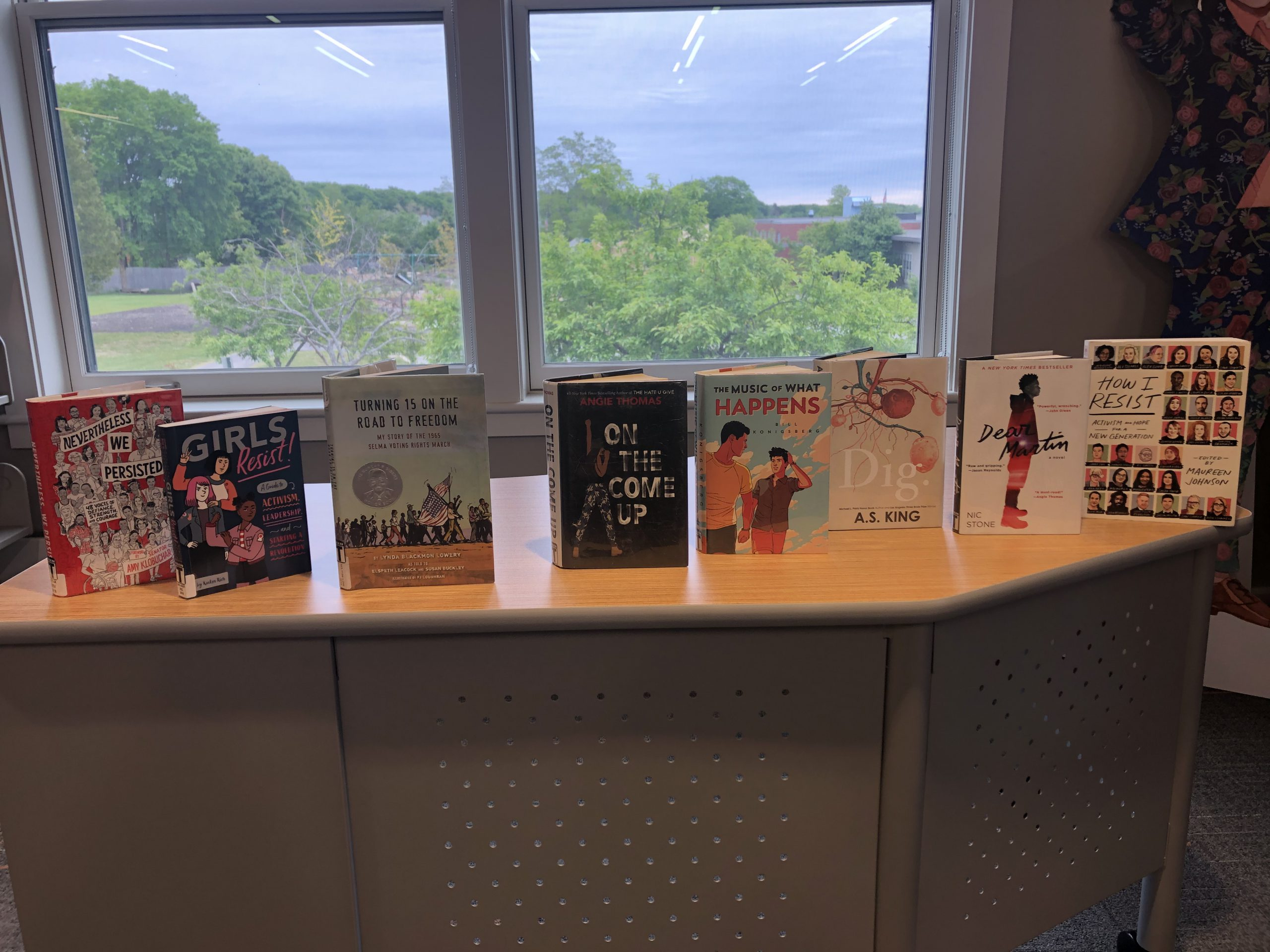 Social Justice Titles for Teens